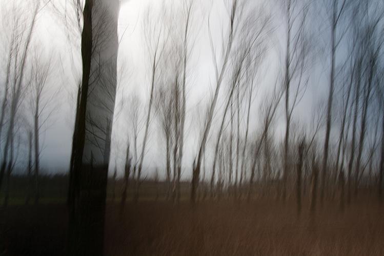 natuur-in-beweging-4 - [c] Marcel Borgstijn
