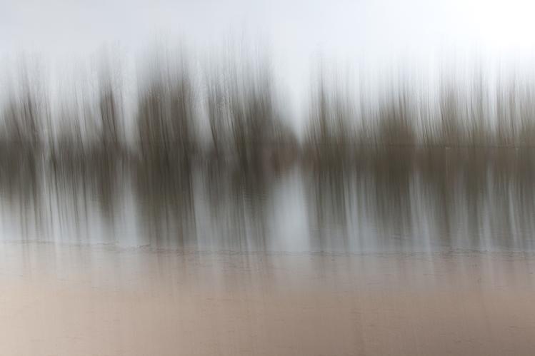 natuur-in-beweging-5 - [c] Marcel Borgstijn