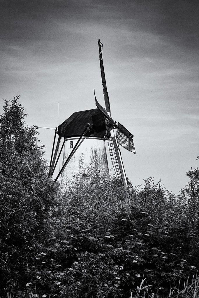 Molen-Marienwaerdt - [c] Marcel Borgstijn